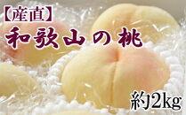 【産直・人気の特産品】和歌山の桃 約2kg・秀選品【2021年度発送】
