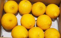 ★2020年11月発送開始★【月間20箱限定】皮まで美味しい無農薬レモン1.2㎏