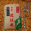 【令和2年産】近江米みずかがみ30kg【玄米】 米粉付き