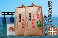 【定期便】令和2年産近江米みずかがみ10kg(5kg×2)全3回 米粉付き