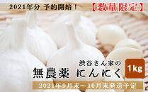 2021年分予約開始!【数量限定】渋谷さん家の「無農薬にんにく1kg」