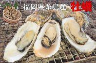 殻付き生食用福吉の牡蠣10kg【福岡県糸島産】