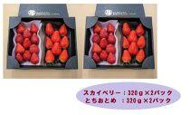 甘くて大きい!長谷川いちご園スカイベリー&とちおとめセット 計4パック
