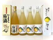 【訳あり期間限定】酒販協同組合「かまくら梅酒、鎌倉の酒屋が創った柚子の酒計2本」に柚子酒更に2本