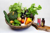 【定期便3回】オーガニック野菜(12~14種)&こだわりの調味料2種セット