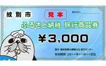 紋別市ふるさと納税旅行商品券 3,000円分
