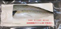 長崎県養殖ぶりフィレ1尾(半身2枚入)