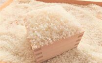 令和2年産「乙女のお米」夢つくし 10kg