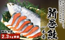 HH014 12月から順次発送!新巻鮭一本姿(2.3kg前後)<秋元水産>