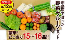 豪華!野菜セット定期便年12回【毎月コース】旬の野菜・フルーツ・キノコを15~16品目盛り合わせ!