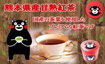 【ポイント交換専用】赤缶 熊本県産甘熟紅茶(お茶の堀野園)