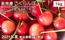 余市産さくらんぼ(1kg)<2021年夏!東谷農園より発送>