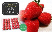 (2021年3月発送)完熟まりひめ約800g(9~18粒入×2パック)(和歌山県オリジナルブランド苺)