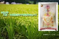 ☆2020年産(令和2年)収穫☆三原・本郷産恋の予感 精米10kg(5kg×2)