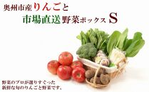 奥州市産りんごと市場直送野菜ボックス(S)【100個限定・12月中旬お届け】