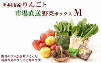 奥州市産りんごと市場直送野菜ボックス(M)【100個限定・12月中旬お届け】
