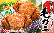 北海道・噴火湾産冷凍ボイル毛ガニ約500g前後×2尾<森水産加工業協同組合>