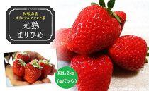 (2021年2月発送)農家直送完熟まりひめ約1.2kg(4パック)(和歌山県オリジナルブランド苺)