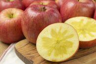 AP103 山形県産 幻のりんご 高徳 約3kg