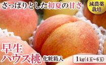 南島原の特別栽培ハウス桃「約1kg」化粧箱