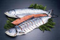 銀毛と呼ばれる身質のオス秋鮭だけを厳選!鮭乃丸亀 熟成中辛鮭(秋さけ)切身