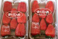 自農園産 和歌山オリジナルいちご『完熟まりひめ』大粒3パック