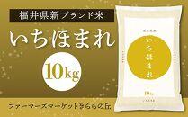 新ブランド米!「いちほまれ」10kg
