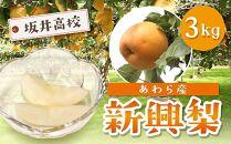 新興梨(3kg)大玉でシャキっとした食感が大人気