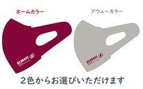 川崎ブレイブサンダース COOLマスク2枚セット