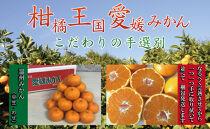 柑橘王国愛媛産温州みかん【早生】約5kg~まごころ手選り手詰め