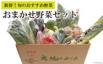 【ポイント交換専用】おまかせ野菜セット
