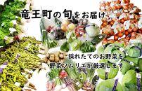 季節のおすすめ野菜
