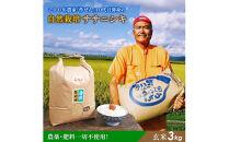 令和2年産 自然栽培米 ササニシキ玄米 3kg<アイレッツ>