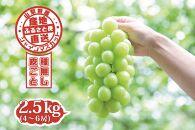 【2021年発送】山梨県産 シャインマスカット 2.5kg(4~6房)