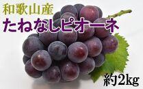 【先行予約】[新鮮・産直]和歌山かつらぎ町産たねなしピオーネ約2kg【2021年8月下旬~発送】