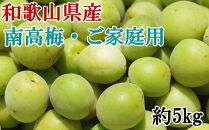 【先行予約】[和歌山名産]南高梅約5kg(サイズ混合)・ご家庭用選別【2021年5月下旬~発送】