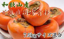 【先行予約】和歌山産富有柿ご家庭用約7.5kgサイズ混合【2021年11月~発送】
