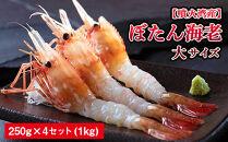 【噴火湾産】ぼたん海老 大サイズ 約250g×4セット(1kg)<ワイエスフーズ>