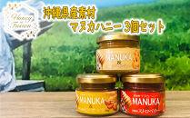 沖縄素材マヌカハニー3種セット