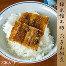【錦水館】穴子山椒煮 2本入り×5セット
