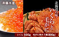 AM041北海道の味!いくらと毛がにのセット<斉藤水産>