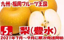 九州・福岡フルーツ王国八女から直送!梨(豊水)約5kg