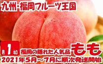 九州・福岡フルーツ王国八女から直送!桃約1kg