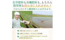※取扱終了※《3ヵ月定期便》令和2年産玄米3種(つや姫・ササニシキ・ひとめぼれ) 3kg×3回 計9kg【自然栽培米】<アイレッツ>