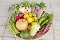 野菜屋高知の新鮮野菜セット/日曜市の野菜を味わうお試し便