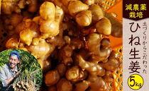 特別栽培「囲い生姜」<約5kg>