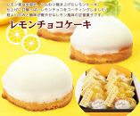 昔ながらのレモンケーキ『レモンチョコケーキ』〇北海道・新ひだか町静内からお届けします