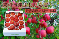 【山形県東根市産】ふじりんご特秀品5kg BG33