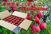 【山形県東根市産】ふじりんご特秀品10kg BG01