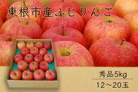 【山形県東根市産】ふじりんご秀品5kg BG34